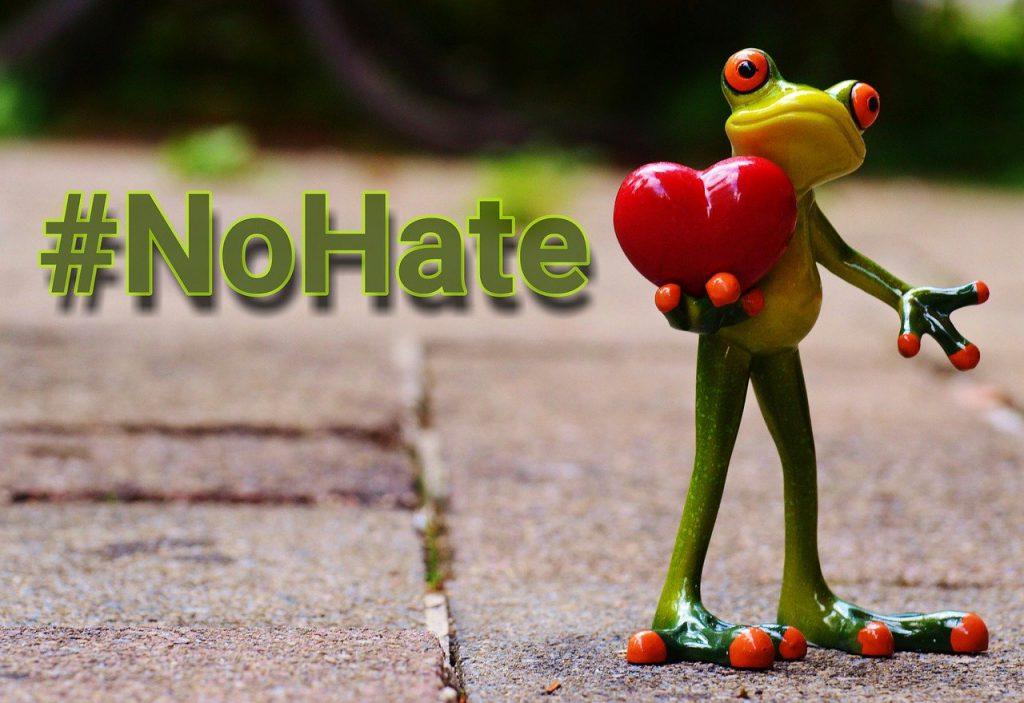 na szarym bruku ulicznym postać stojącej, zielonej żabki, która trzyma w łapce czerwone serduszko. Z lewej strony napis poprzedzony znakiem hasztagu - No hate